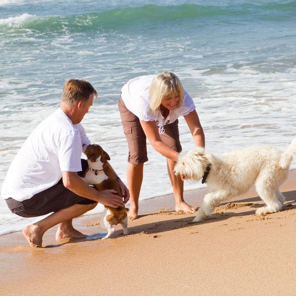 vacanza gallipoli con cane
